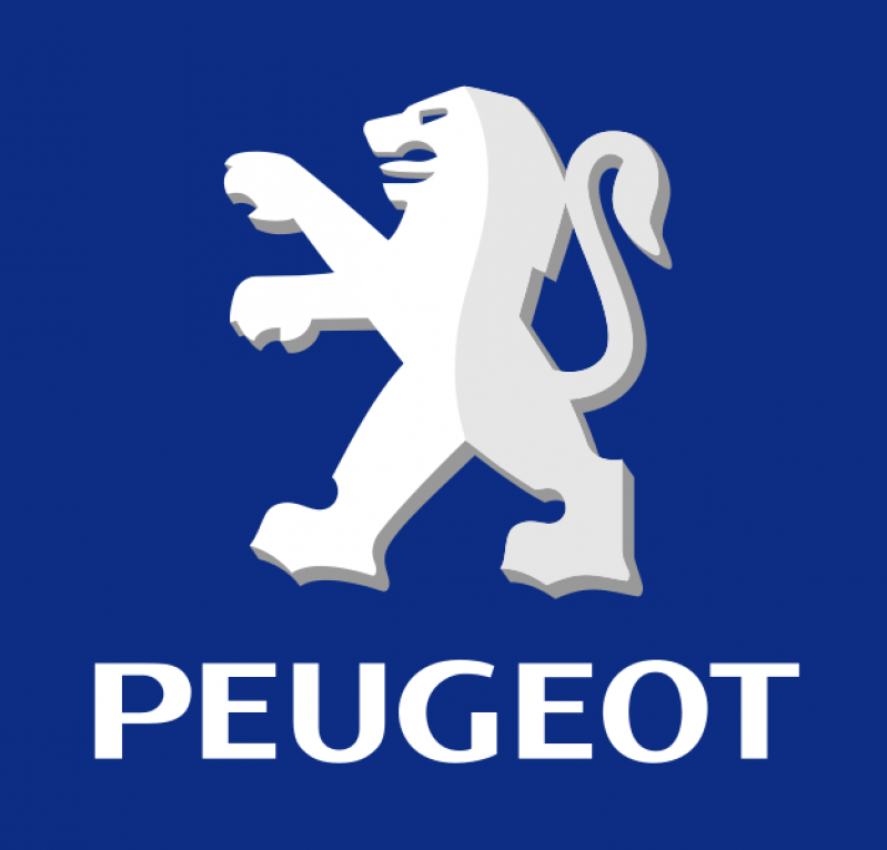 Manutenção Peugeot 207 Preço no Parque Alexandre - Manutenção de Peugeot em Sp